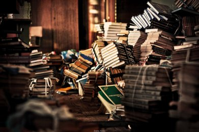 books_by_zhen_yang-d4q0tdf